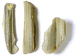 Plattenhornstein Typ Abensberg-Arnhofen 2, verschiedene Fundorte