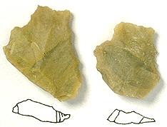 Kreidehornstein der südöstlichen Frankenalb (4)