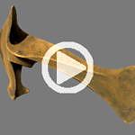 Animierter Flug um das 3D-Modell einer Replik einer Bronzeaxt aus der Sammlung.