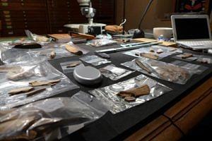 Pujol, Laboratorium. Funde der Grabungen von Enlène im Zuge der Inventarisierung und wissenschaftlichen Untersuchungen (© Association Louis Bégouën).